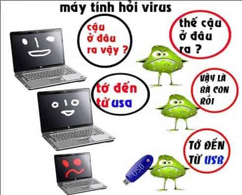 Virus đến từ đâu?
