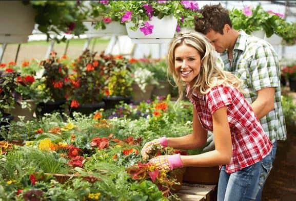 Những ý kinh doanh cho bạn trẻ đam mê cây và hoa