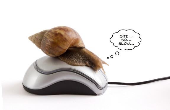 kiểm tra tốc độ và hiệu suất Website