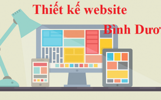 Thiết kế website tại Bình Dương thị trường mới cho các công ty dịch vụ web 3