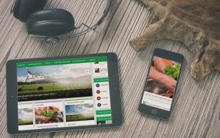 Thiết kế web giới thiệu doanh nghiệp thucphamminhbach