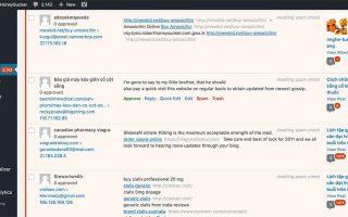 Ngan Ngua Spam Cho Web Wordpress 3