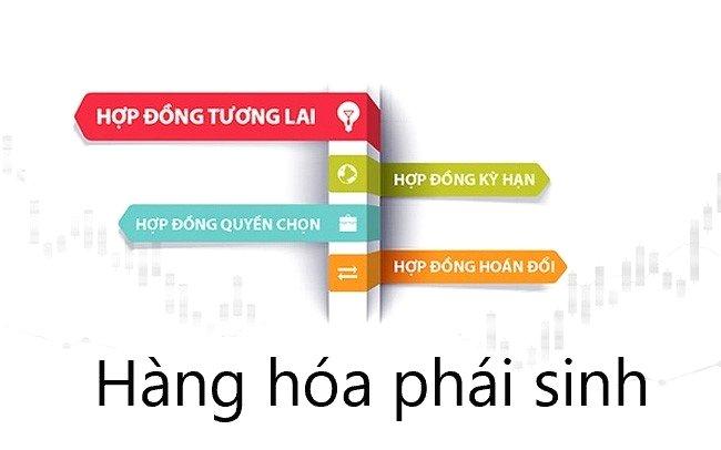 Hop Dong Hang Hoa Phai Sinh